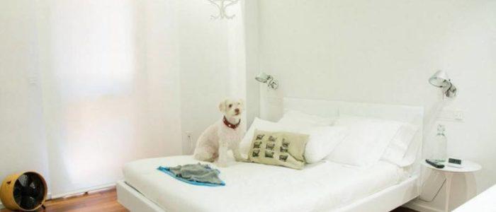 Белоснежная спальня 4